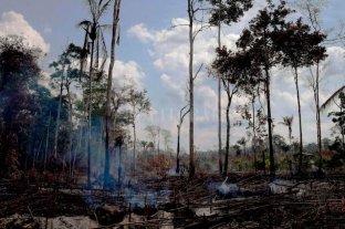 Brasil suspendió la quema de campos por 60 días