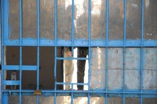 """Ratifican la prisión perpetua a un hombre que cometió """"homicidio agravado por placer"""""""