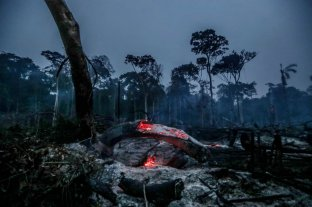 Cómo podrían impactar en la ciudad los incendios en la selva amazónica