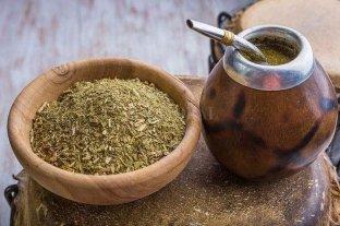 El consumo anual de yerba mate alcanzó los 158 millones de kilos