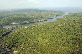 Los incendios de la Amazonia