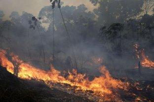 La Cruz Roja advirtió que hay condiciones para que se siga propagando el fuego en la Amazonia