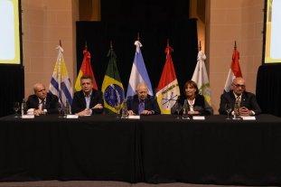 Mercosoja 2019: una oportunidad para potenciar la cadena