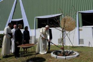 """Según el papa Francisco, la deforestación debe ser vista como """"una amenaza global"""""""