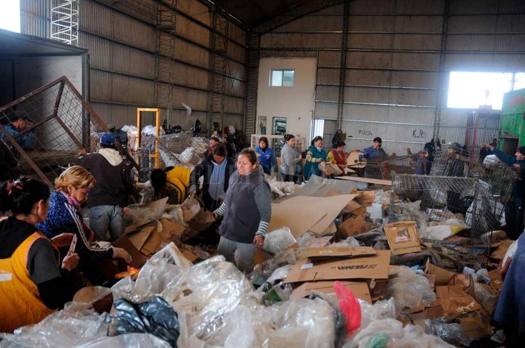 Recupero. Unas 60 personas trabajan en un galpón contiguo al relleno sanitario separando la basura. Crédito: Flavio Raina - Archivo.
