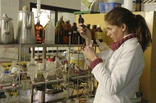 Crearon una bebida con aceite de chía para aumentar el consumo de omega 3