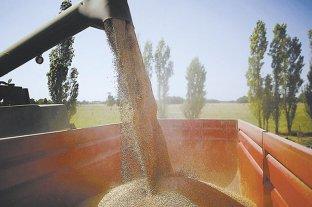 Argentina exportará harina de trigo a China tras 20 años de negociaciones