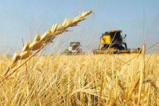 La BCR expresa su satisfacción por la apertura de las exportaciones de harina de soja a China