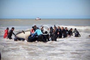 Fotos y video: Así rescataron a la última orca en Mar Chiquita -  -