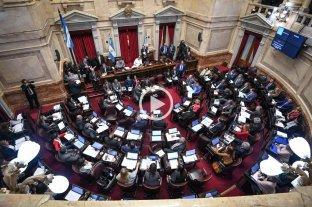 El Senado trata la ley de Emergencia Alimentaria
