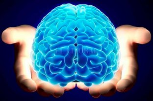 La reserva cerebral, la clave para enfrentar el Alzheimer - El ejercicio del cuello hacia arriba es tan básico y necesario como el ejercicio del cuello hacia abajo.  -