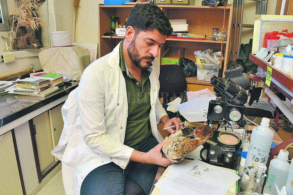 El biólogo Andrés Sarquis encabezó el exhaustivo relevamiento de la avifauna que habita en la provincia. <strong>Foto:</strong> Guillermo Di Salvatore