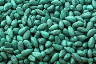 El INASE lanza campaña de control en el uso de semillas
