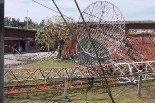 Hipódromo de La Plata: un desprendimiento provocó la muerte de un caballo