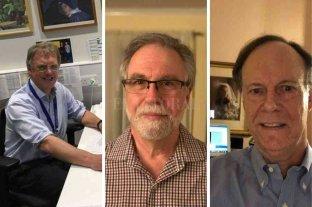 Nobel de Medicina para tres médicos que estudian la capacidad de adaptación de las células