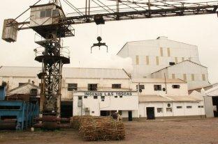 """La provincia confirma que no habrá zafra en Las Toscas por """"falta de vocación industrial"""" de Del Fabro"""