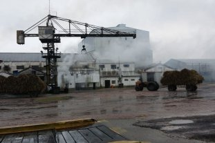 Propondrán expropiar el ingenio azucarero Las Toscas