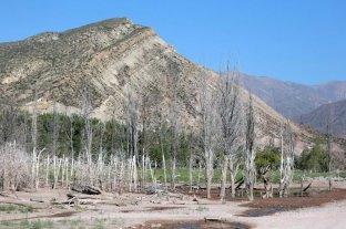 Mendoza vive la peor sequía de su historia