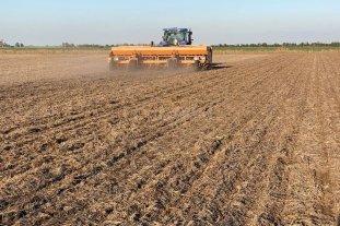 Las lluvias favorecieron y reanudaron los procesos de siembra