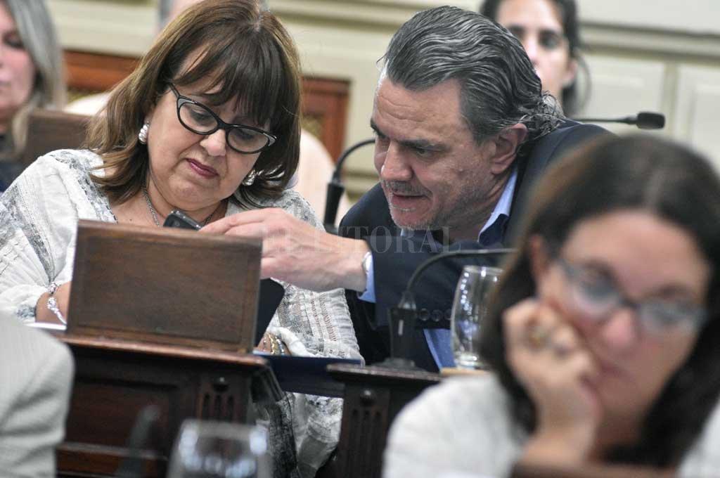 Alicia Gutiérrez y Rubén Galassi, presidentes de Derechos y Garantías y de Derechos Constitucionales, comisiones que dictaminaron sobre el código. <strong>Foto:</strong> Luis Cetraro