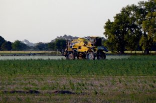 Regulan por consenso el uso de fitosanitarios en Sastre