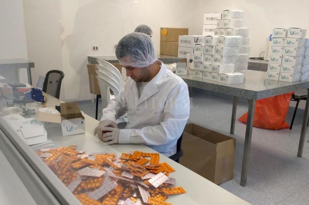 Además de unas 600 mil dosis para tratar ambas enfermedades a entregar el mes próximo noviembre, hasta diciembre proveerá a la Secretaría de Salud nacional de otros 12 millones de comprimidos, en tres entregas. Crédito: Gentileza