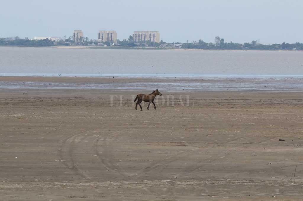 Imagen tomada desde el paraje