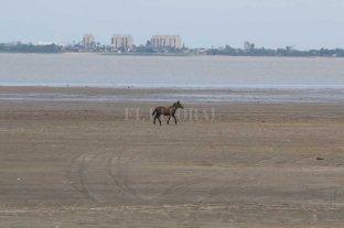 A principios de noviembre, el río Paraná continuaría por debajo de 1,70 mts