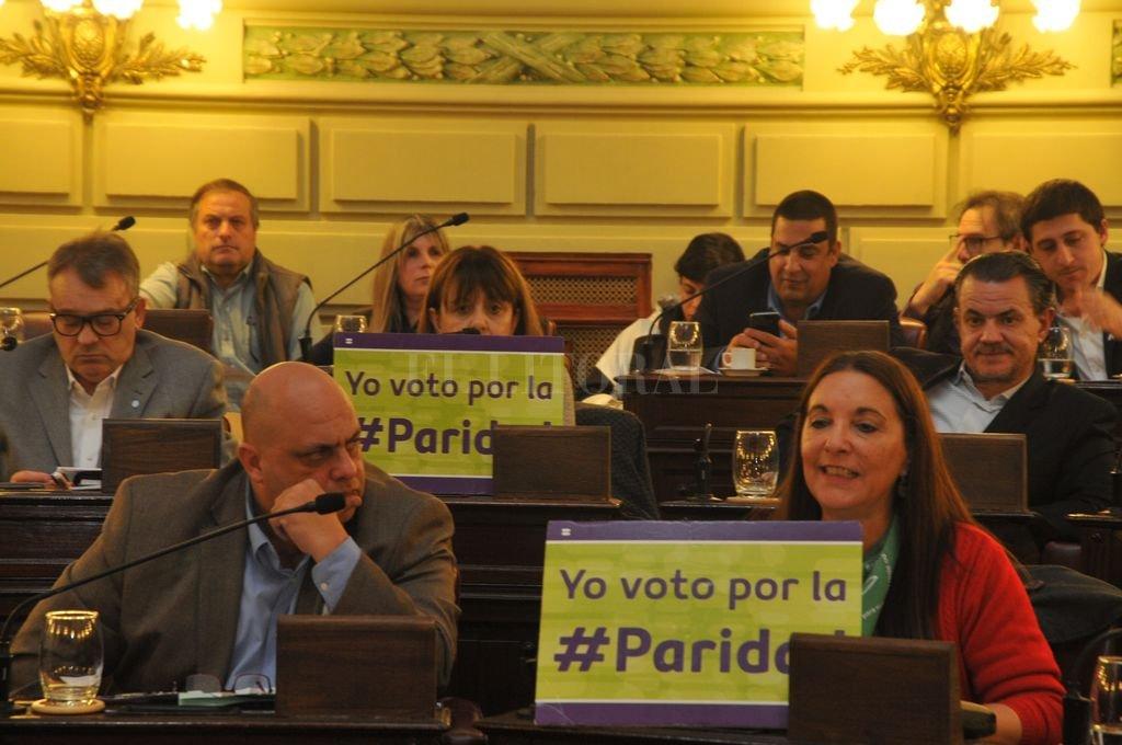 En 2018 Diputados, por unanimidad, dio media sanción a la Ley de Paridad.  Crédito: Luis Cetraro
