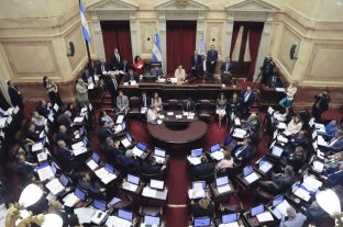 Juran los senadores nacionales elegidos en los comicios de octubre