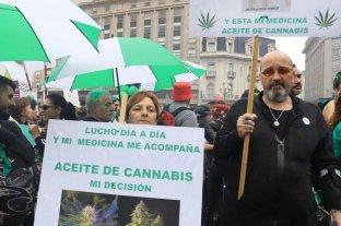Organizan marcha para pedir por la ley de cannabis medicinal