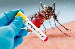 Científicos prueban crear mosquitos inmunes al virus del dengue