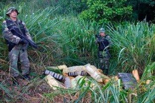 Secuestraron más de 8.000 kilos de marihuana en Misiones -  -