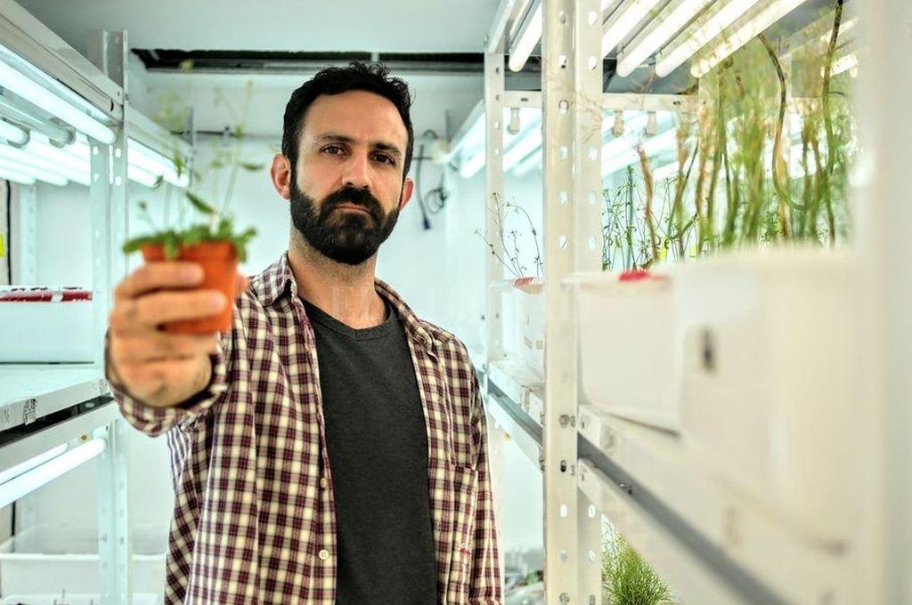 El investigador santafesino indagó sobre nuevas estrategias de agricultura sustentable, y cómo se puede contribuir a mejorar el rendimiento de los cultivos. <strong>Foto:</strong> Gentileza