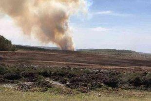 Un incendio forestal afectó 131 hectáreas en Tierra del Fuego