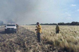 La Pampa fue declarada en emergencia agropecuaria
