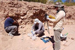 Encuentran restos óseos de una persona de la época prehispánica en Humahuaca