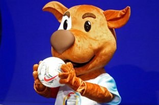 """Copa América: """"Pibe""""se llama la mascota oficial y """"Merlín"""" el balón"""