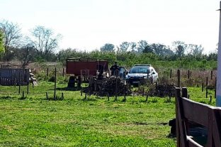 Encierran y analizan  a perros en Recreo - Los perros fueron secuestrados en el mismo campo donde fue hallado muerto Diego Román, en jurisdicción de Recreo. -
