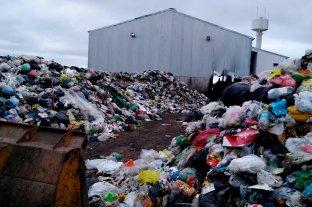 Producir trabajo y plata con toda la basura de la ciudad -