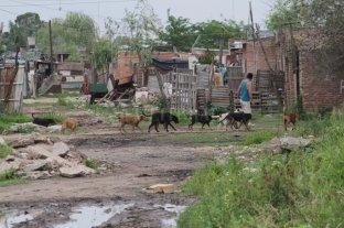 La pobreza en la Argentina llegó al 40,8% -  -