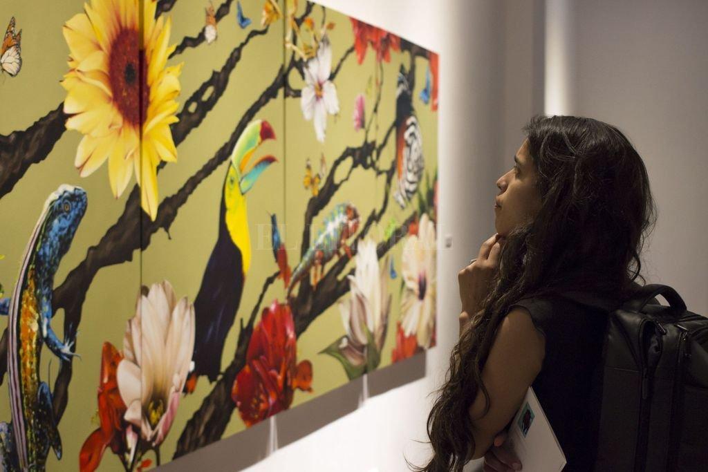 """Inauguración """"Naturaleza Viva"""", en el Museo Municipal de Artes Visuales """"Sor Josefa Díaz y Clucellas"""". <strong>Foto:</strong> Municipalidad de Santa Fe"""