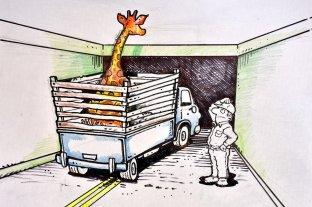 El día en que una jirafa intentó pasar por el Túnel Subfluvial