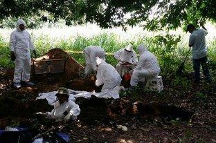 Colombia: hallaron los cuerpos de 50 desaparecidos en una fosa clandestina -  -