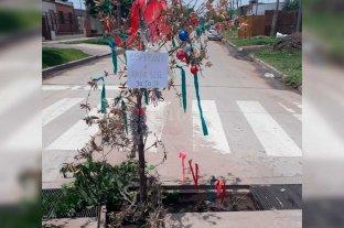 Un arbolito de navidad en la calle para reclamar el arreglo de una alcantarilla