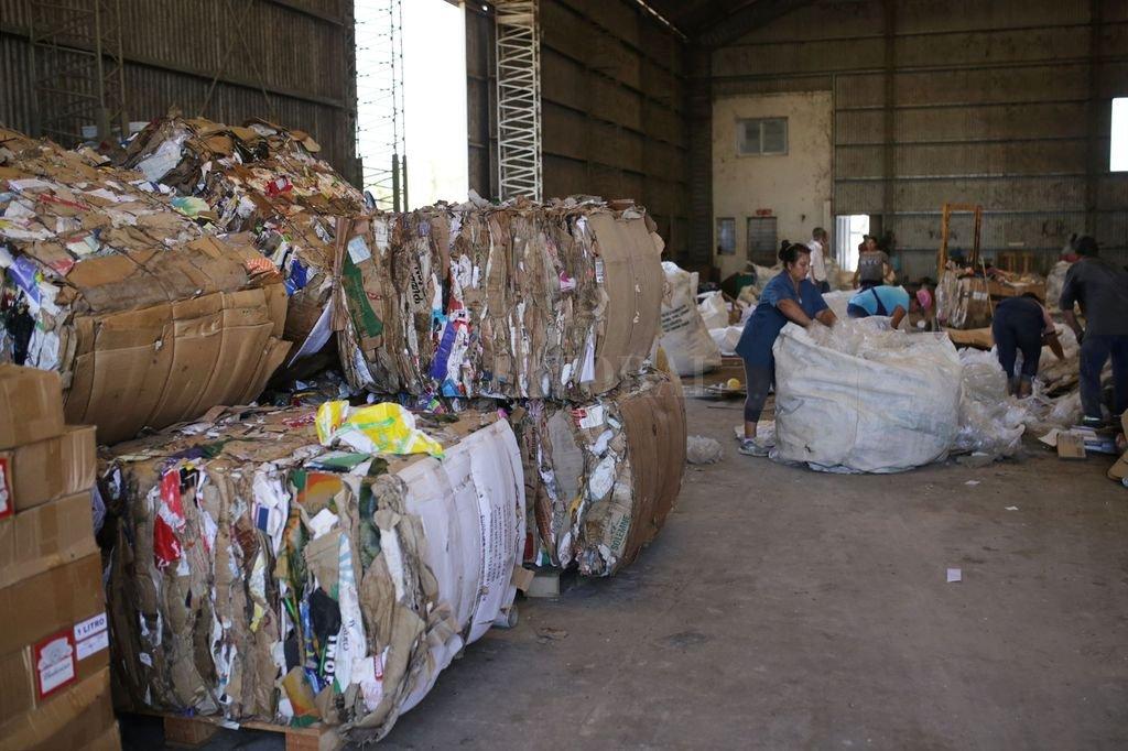 """Trabajo. """"La mayor parte de lo que reciclamos es cartón, plástico, metal como las latitas de cerveza, aerosoles, latas de conserva; diario, papel blanco, hierro"""", detalló Maricel Ortega, una de las referentes de la asociación Dignidad y Vida Sana. <strong>Foto:</strong> Gentileza Municipalidad"""