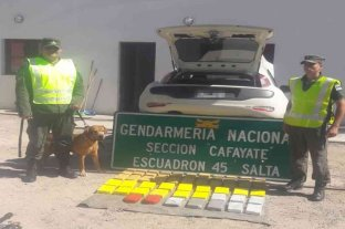 Transportaba más de 48 kilos de cocaína en su vehículo