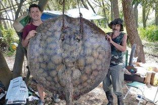 Santafesinos pescaron una raya de 153 kilos
