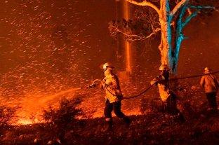 Incendios en Australia: 23 muertos, 1.500 casas destruidas y críticas al primer ministro