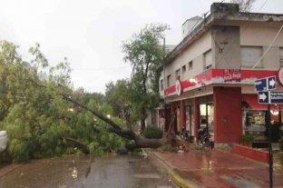 Un fuerte temporal causó destrozos en Río Cuarto